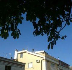 San Giovanni Rotondo, operaio sul tetto